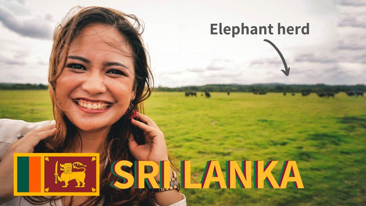 THE TRUTH of Elephant Safari in SRI LANKA - Kaudulla National Park [Ep. 11]