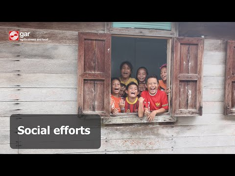 Social Efforts