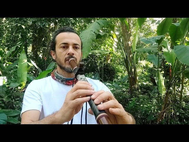 Búho flauta nativo A 432