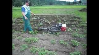 Obsypnik do ziemniaków dla działkowców