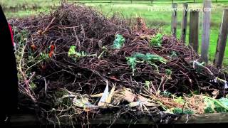 Sustainable Gardening Tips Composting - Learn Sustainable Gardening Tips for Composting