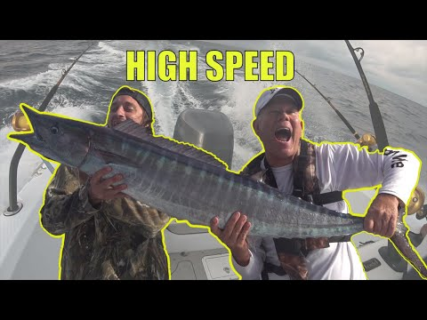 How To Catch Wahoo High Speed Trolling | My 1st WAHOO Catch Clean And Cook