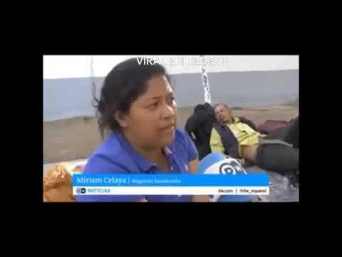¡Los frijoles son para los puercos! Memes Hondureños - YouTube