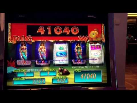 Gold fish slots max bet big win