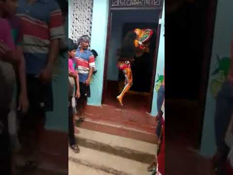 Tiger dance of soumya ranjan senapati