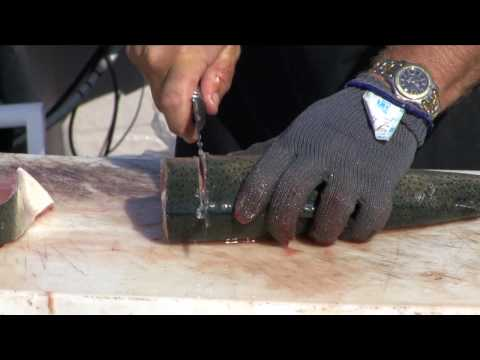 How To Fillet Trout Or Salmon
