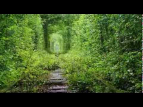 Scarborough Fair Canticle /   Instrumental
