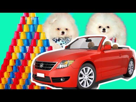 МАКС и КАТЯ собаки блогеры СБОРНИК мультфильмов для детей ВСЕ СЕРИИ ПОДРЯД смотреть без остановки