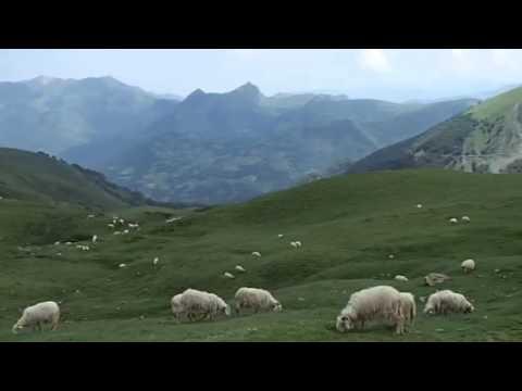 Col d'Ubisque - the  sound of goats bells