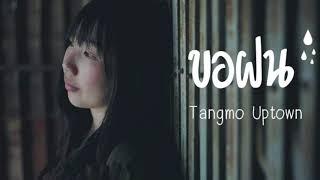 ขอฝน-TANGMO UPTOWN OFFICIAL AUDIO แตงโม อัพทาวน์