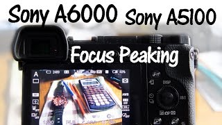 Sony A6000 and A5100 Focus Peaking