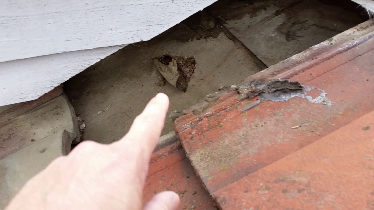 How to find a roof leak under a tile roof finally there it is how to find a roof leak under a tile roof finally there it is part 4 dailygadgetfo Choice Image
