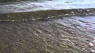 Чистое море Большевик, Лазурное лучше Средиземного(, 2012-08-19T12:54:56.000Z)