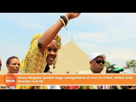 Grace Mugabe spirited large consignments of ivory to China, United Arab Emirates and US