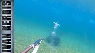 Это КОСМОС! Подводная охота на истоке Ангары.