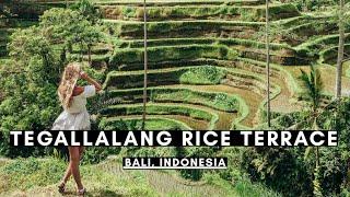 Gambar cover TEGALLALANG RICE TERRACE, BALI | BALI VLOG #002