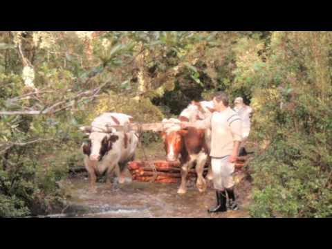 Cultural Ecology of Chilote Barter - Richard Vercoe
