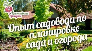 Опыт садовода по планировке сада и огорода #urozhainye_gryadki