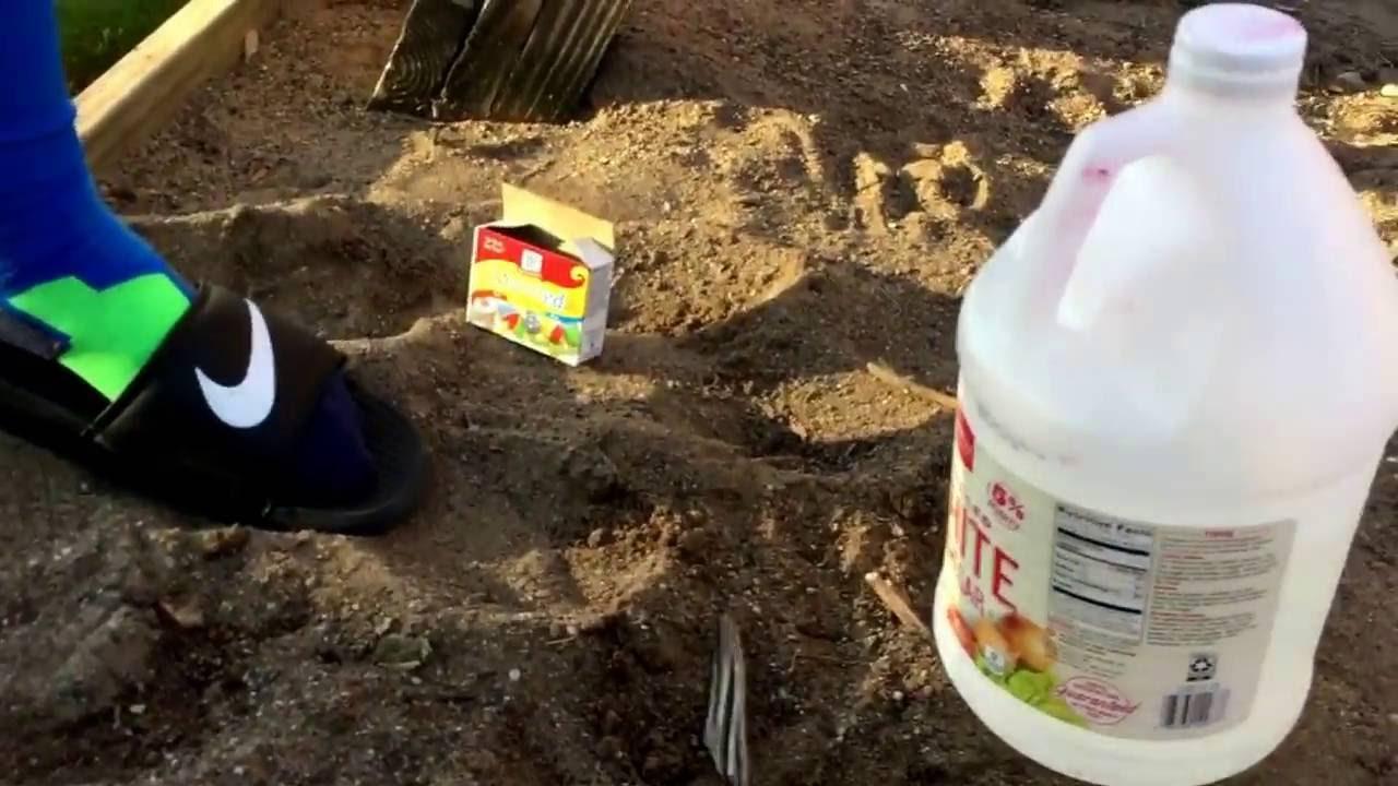 Worksheet Baking Soda & Vinegar Volcano science experiment baking soda and vinegar volcano youtube volcano