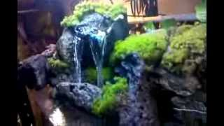 Check Out The Waterfall I Built For My 55 Gallon Cichlid Tank