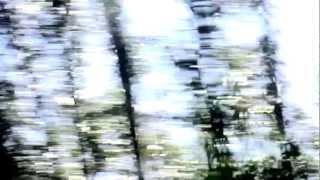 OSCAR HAHN - DISIDENTE