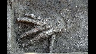 3600 Year Old Pits Full Of Giant Hands Were Discovered In Egypt