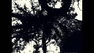 身殺 (Misogi) - 遠ツ神 笑ミ給ヘ (Tofotukami Wemitamafe) [full album]