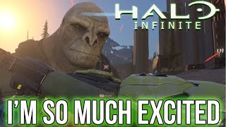 I Have Concerns About Halo Infinite...