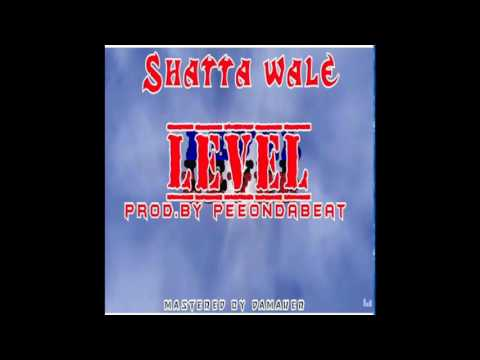 Shatta Wale - Level (Audio Slide)