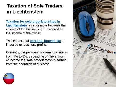 Simplest Form of Doing Business in Liechtenstein