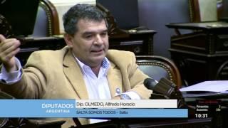 Diputado Olmedo Alfredo Horacio - Expresiones en minoría 10-05-2017