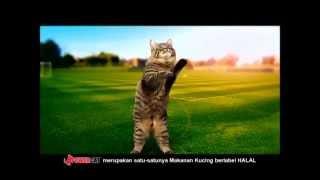 Power Cat by Adabi
