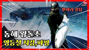 황금어장 동해안 왕돌초 출조 지깅 파핑,부시리,방어 배워보자 빅게임!!