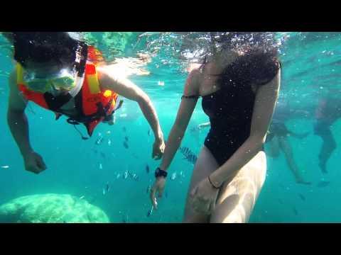 #pulau tenggol Snorkeling