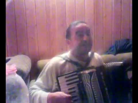 Шамшадинский аккордеонист