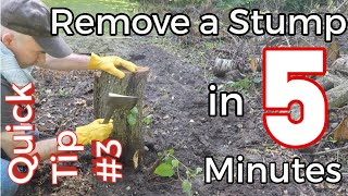 Quick Tip #3 - Visually remove a Tree Stump in 5 Minutes