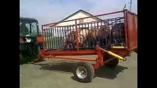Трейлер скотовоз ТС-3 для перевозки свиней, грузоподъемность 3 т.