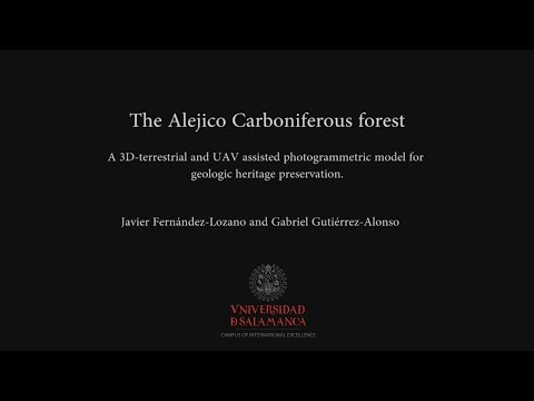 "The Alejico Carboniferous Forst ""3D reconstruction and preservation of a carboniferous forest"""