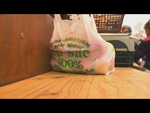 Biodegradable plastic: A false promise?