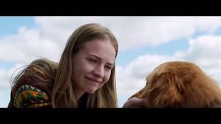 "Стих про собаку до слёз! Фильм "" Собачья жизнь"""