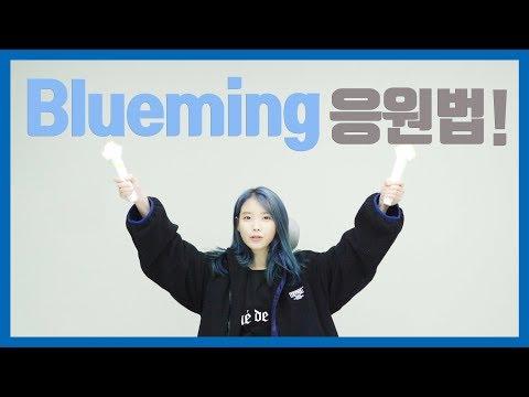 [IU] 'Blueming' 응원법