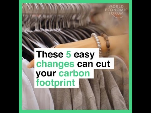 These 5 easy changes can cut your carbon footprint