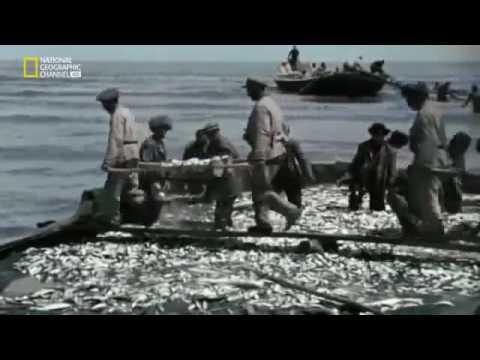Azerbaijan in World War II Objective Baku Hitler Battle for Oil  National Geographic  Azerbaijan