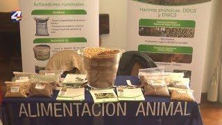 ALUR presentó resultado de investigación sobre Alimento Animal en jornada de la UPIC en Paysandú