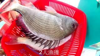 3-12-2016 香港船釣 Hong Kong Boat fishing '堅持到最後'