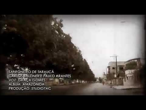 Musica Tarauacá acre