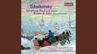 Symphony No. 5 in E Minor, Op. 64: Andante-Allegro con anima
