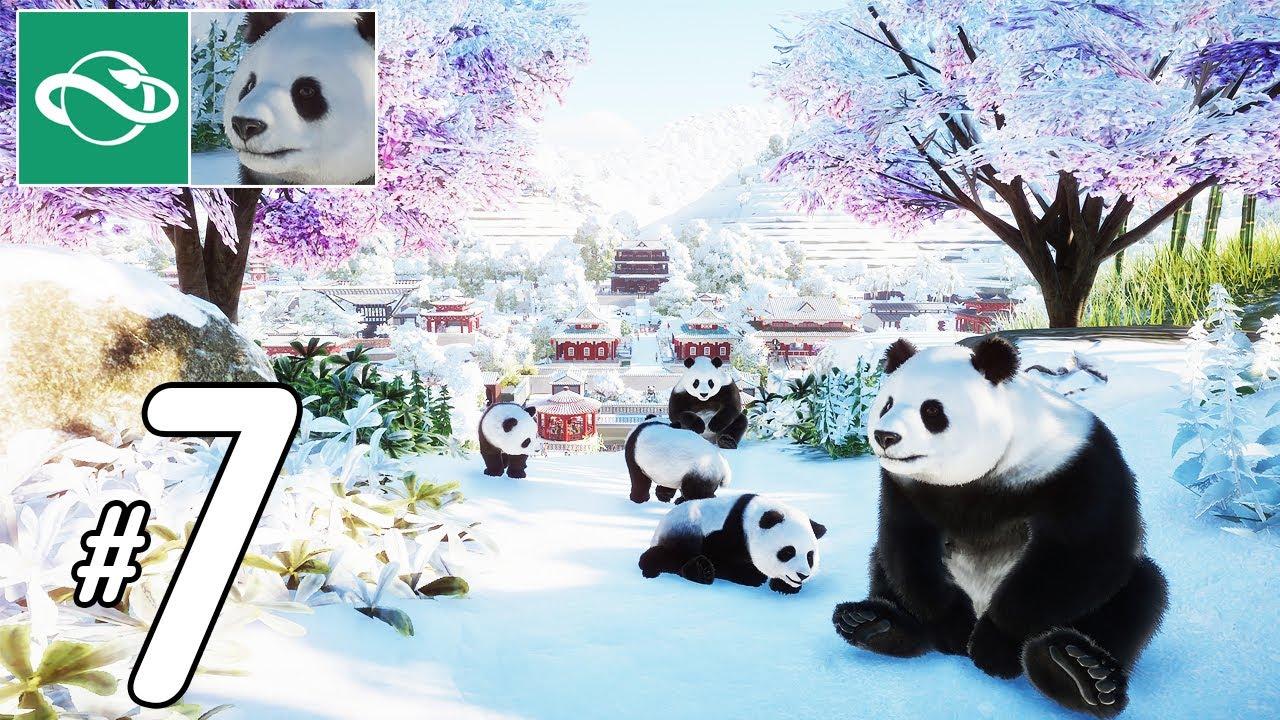 Planet Zoo - ศูนย์อนุรักษ์หมีแแพนด้า (ภาคใหม่) #7