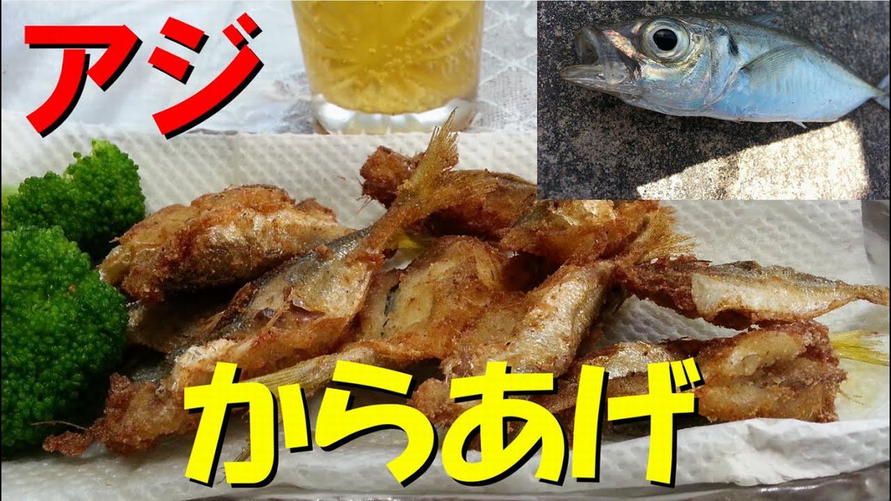 酒の肴を求めて魚釣り【アジ編】 - YouTube