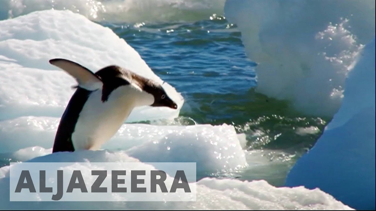 Antarctica deal on marine protection reached